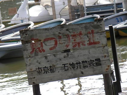 魚釣り禁止