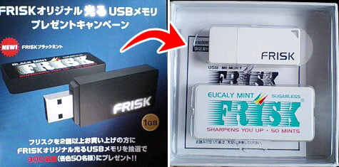 FRISK USB Memory